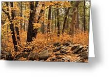 A Golden Autumn Forest  Greeting Card
