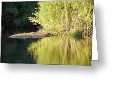 A Golden Reflection Greeting Card