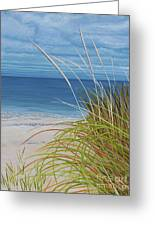 A Good Day For Beachcombing Greeting Card