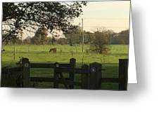 A Graveyards View. Greeting Card