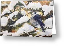 A Gray Jay Kind Of Day Greeting Card