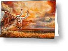A Great Texas Longhorn Steer Inspired The Bevo Song Greeting Card