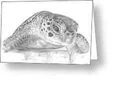 A Green Sea Turtle Grayscale Greeting Card