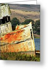 A-ground At Point Reyes Greeting Card