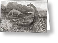 A Group Of Brontosaurs, Or Thunder Greeting Card