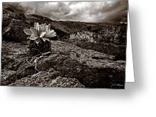 A Hard Existence - Sepia Greeting Card