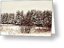 A Herd Of Trees Greeting Card