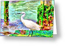 a heron is walking on a stair about the Grand Canal Greeting Card