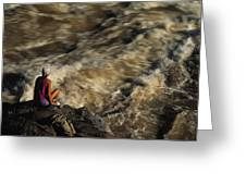 A Hiker Scans Lava Rapids Greeting Card