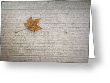 A Hint Of Autumn Greeting Card
