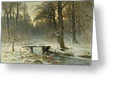 A January Evening In The Woods Greeting Card