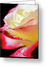 A Kiss Of Dew Greeting Card