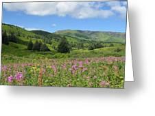 A Kodiak Moment Greeting Card