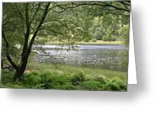 A Lake Near Glendalough Greeting Card