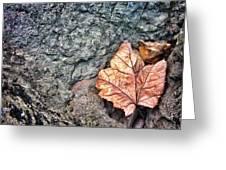 A Leaf's Bow Greeting Card