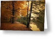 A Leafy Path Greeting Card