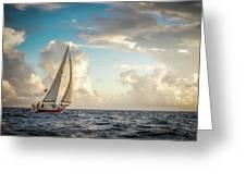 A Life At Sea Greeting Card