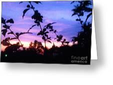 A Lighter Side Of A Sunset Greeting Card