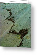 A  Line  In  The  Sand Greeting Card