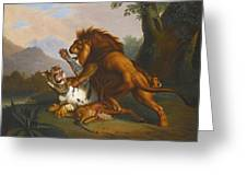 A Lion And Tiger In Combat Greeting Card