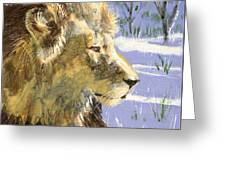 A Lion In Winter Greeting Card