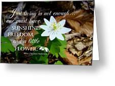 A Little Flower Greeting Card