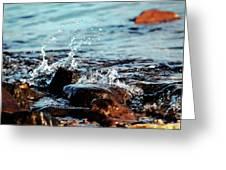 A Little Splash 3 Greeting Card