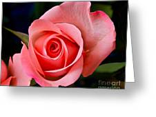 A Loving Rose Greeting Card