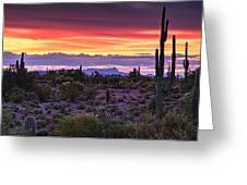 A Magical Desert Morning  Greeting Card