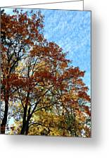 A Magnificent Fall Day Greeting Card