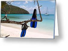 A Maho Bay Snorkel Greeting Card by Richard Mansfield
