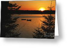 A Maine Sunset Greeting Card