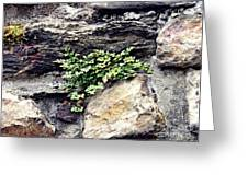 A Medieval Town Wall Greeting Card