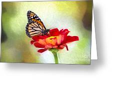 A Monarch Moment Greeting Card