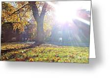 A Morning In Fall Greeting Card