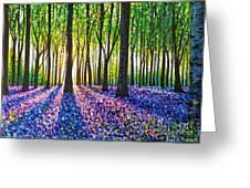 A Morning Walk Through Bluebells Greeting Card
