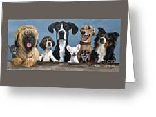 A Motley Crew Greeting Card