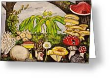 A Mushroom Story Greeting Card