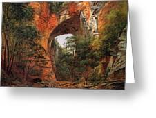 A Natural Bridge In Virginia Greeting Card by David Johnson