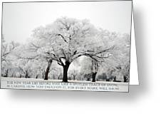 A New Year Greeting Card