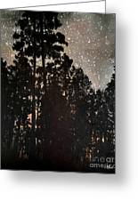The Forest Night Greeting Card