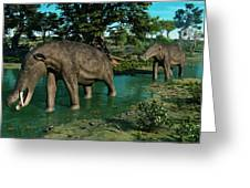 A Pair Of Platybelodon Grazing Greeting Card