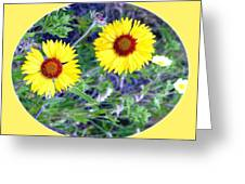A Pair Of Wild Susans Greeting Card