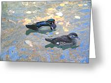 A Pair Of Wood Ducks Greeting Card