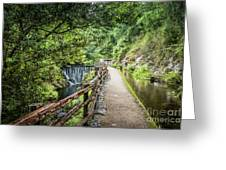 A Path Between Two Waters Greeting Card