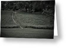 A Path Traveled Greeting Card