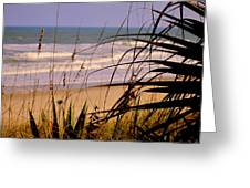 A Peek At The Shore Greeting Card