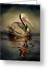 A Pelican And His Reflection Greeting Card