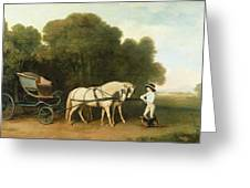 A Phaeton With A Pair Of Cream Ponies In The Charge Of A Stable-lad Greeting Card