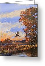 A Pheasent At Sundown Greeting Card